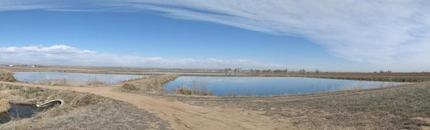 The Haren Recharge Pond near Gilcrest in Weld County.